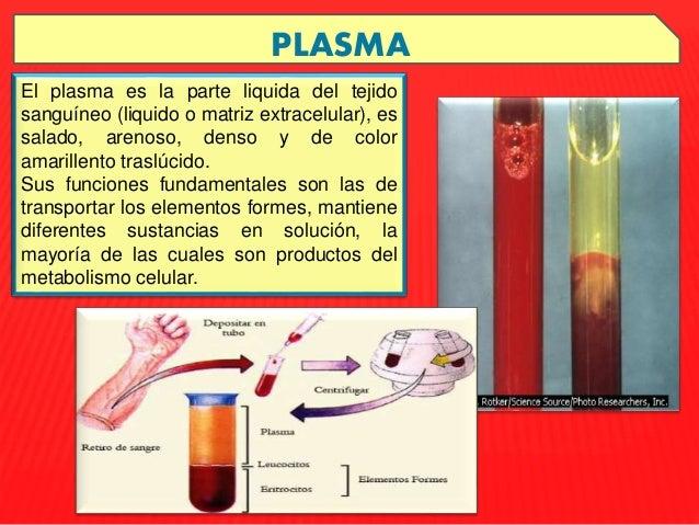 Evkaliptovaya la limpieza de los parásitos