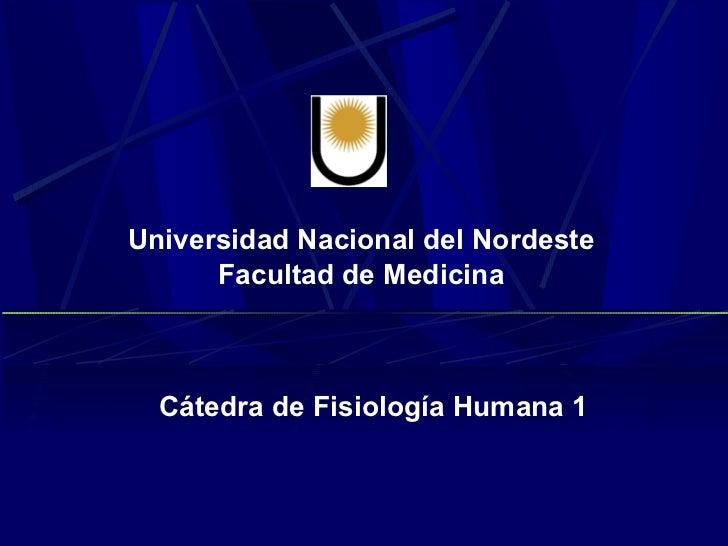 Universidad Nacional del Nordeste      Facultad de Medicina  Cátedra de Fisiología Humana 1