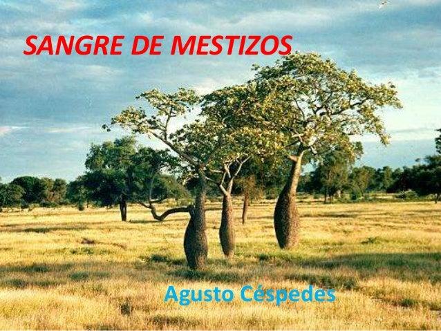 SANGRE DE MESTIZOS  Agusto Céspedes