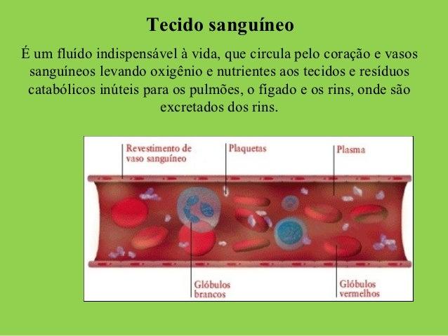 Tecido sanguíneoÉ um fluído indispensável à vida, que circula pelo coração e vasos sanguíneos levando oxigênio e nutriente...