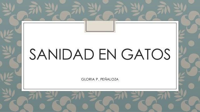 SANIDAD EN GATOS GLORIA P. PEÑALOZA