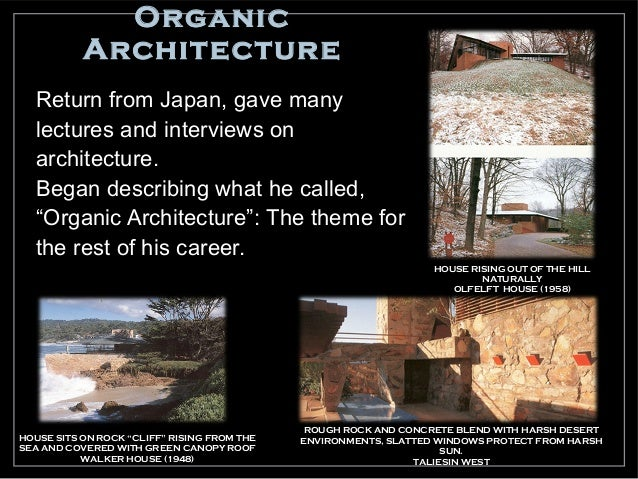 HISTORY OF ORGANIC ARCHITECTURE EBOOK