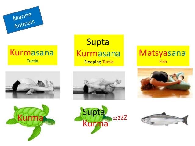 Sanskrit Ashtanga Asana Names (Primary Series)
