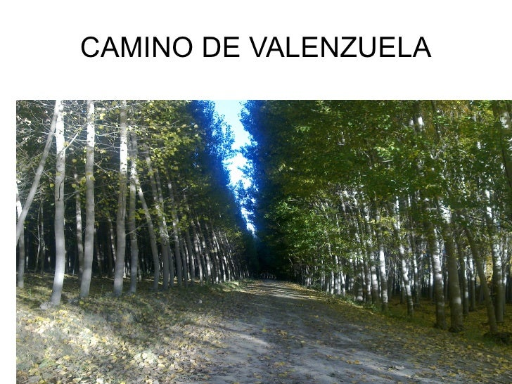 CAMINO DE VALENZUELA