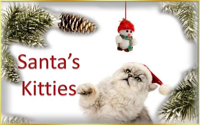 http://judy-christmas.blogspot.com http://www.ppsparadicsom.net http://fauna-flora.gportal.hu