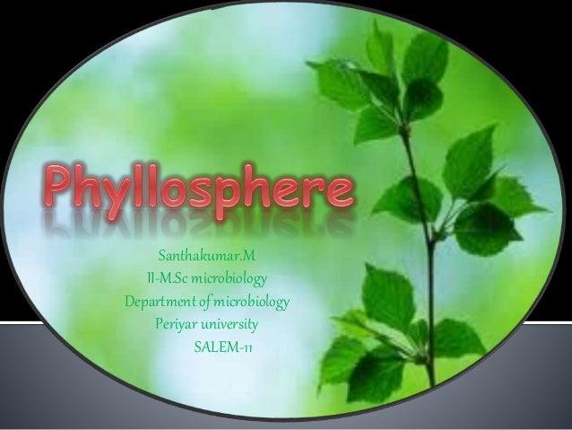 Santhakumar Phyllosphere