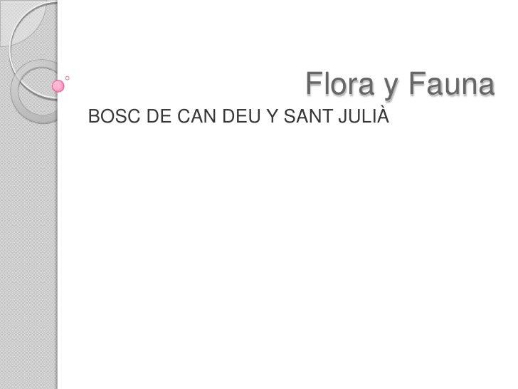 Flora y FaunaBOSC DE CAN DEU Y SANT JULIÀ