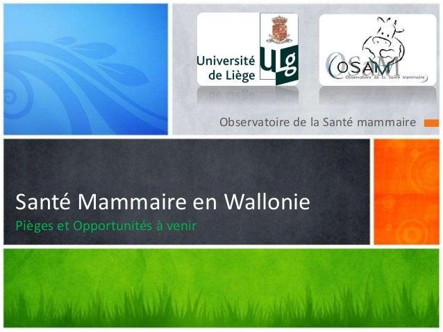 Observatoire de la Santé mammaire Santé Mammaire en Wallonie Pièges et Opportunités à venir