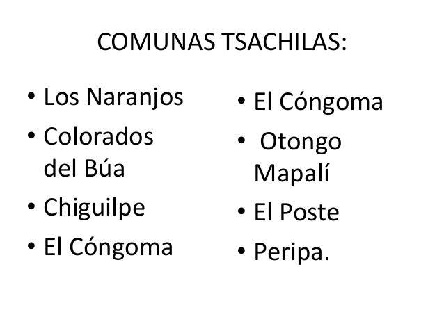 santo domingo de los colorados cougars personals 49 empleos en santo domingo de los colorados, provincia de santo domingo de los tsáchilas disponibles en indeedcom una búsqueda todos los empleos.