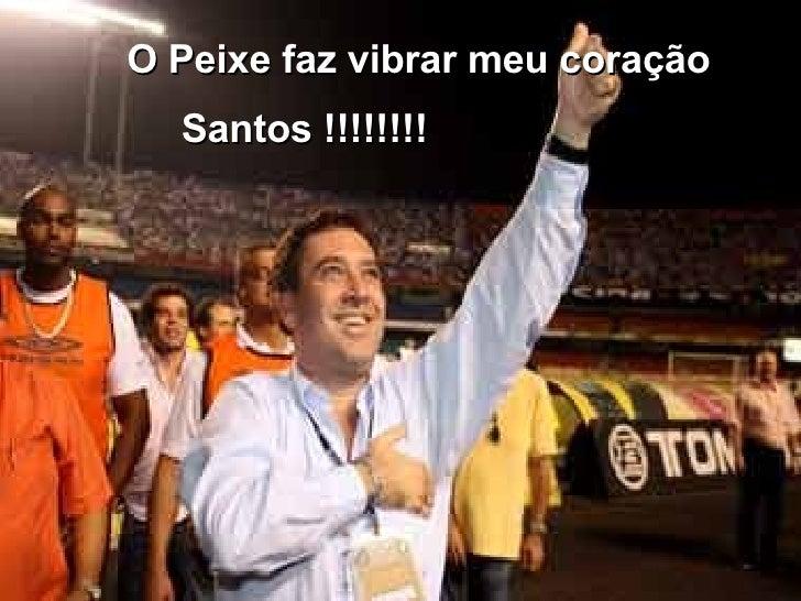 O Peixe faz vibrar meu coração   Santos !!!!!!!!