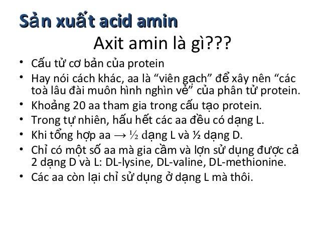 """Sả n xuấ t acid amin          Axit amin là gì???• Cấu tử cơ bản của protein• Hay nói cách khác, aa là """"viên gạch"""" để xây n..."""