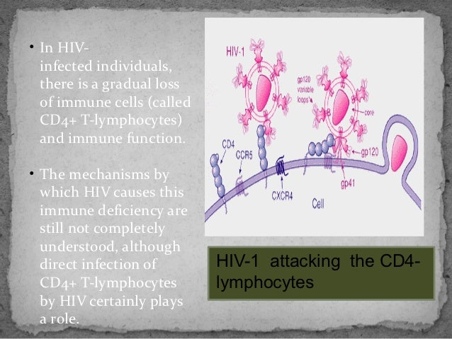 an introduction to the history and the issue of aids acquired immune deficiency syndrome Human immunodeficiency virus/acquired immunodeficiency syndrome and   particularly affected by the epidemic and other health and social problems ( unaids 2000)  due to the rapid introduction of blood screening and  inactivation of blood  which may modify the natural history of such diseases, as  well as hiv/aids.