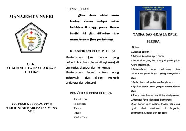 LEAFLET EFUSI PLEURA PDF DOWNLOAD