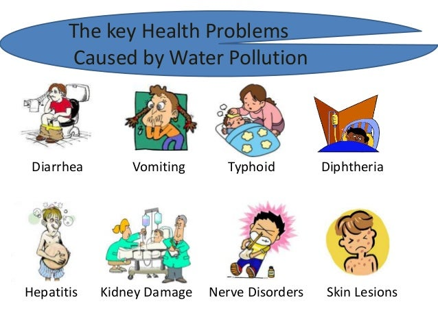 essay on effects of land pollution on human health Environmental pollution • describe types of pollution, sour ces, harmful effects on human health fly ash is now being used for making bricks and as a land fill.