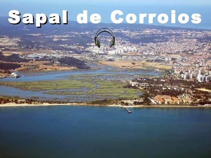 Sapal de Corroios