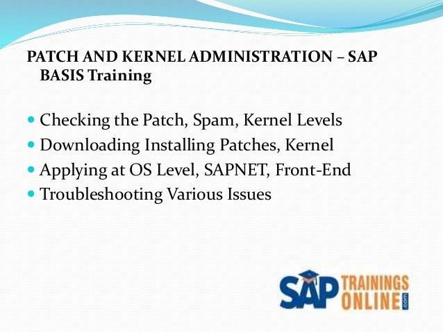 SAP BASIS Online Training | SAP Training