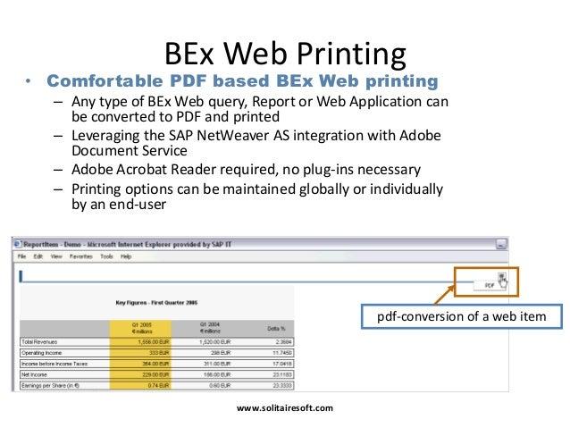 bex web application designer pdf
