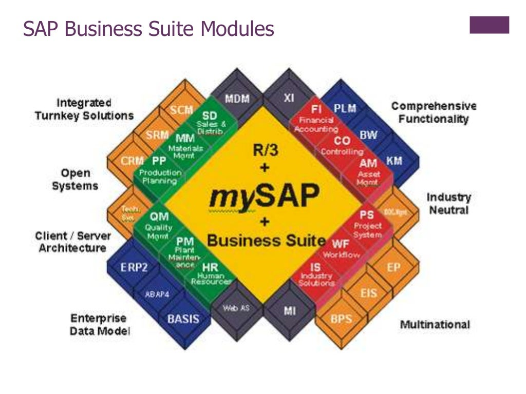 Sap Erp Overview For Laymen