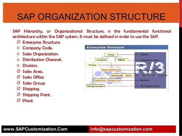 Sap Organization Structure