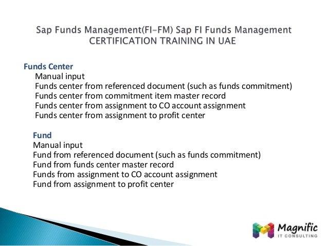 Manual Sap Funds Management