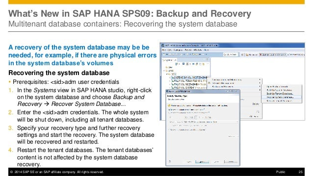 hana backup and recovery Sap hana on aws implementation and operations guide created by: amazon web services, inc sap-on-aws@amazoncom  backup/recovery .