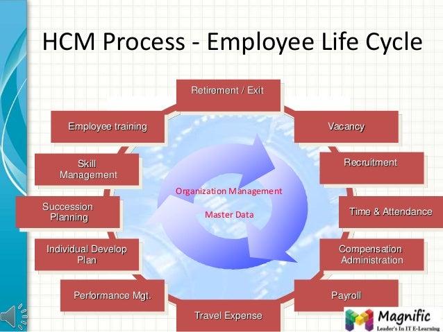 Sap Hcm Training Get Sap Hcm Module Certification Online