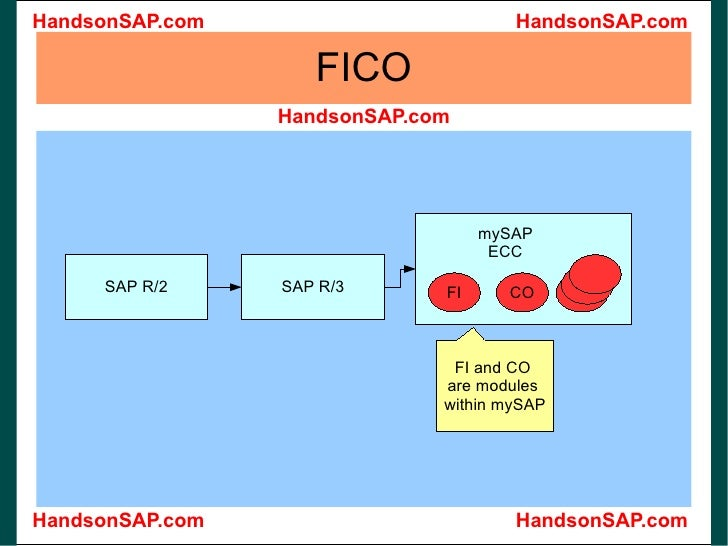 what does ecc stand for sap