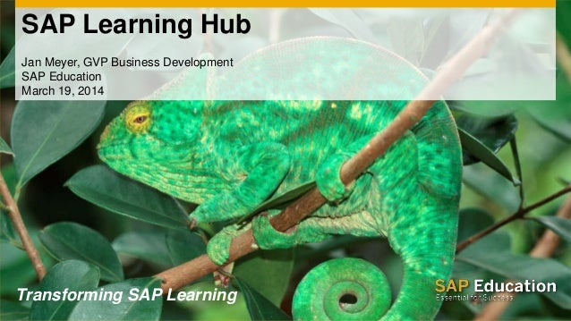 SAP Learning Hub Jan Meyer, GVP Business Development SAP Education March 19, 2014 Transforming SAP Learning
