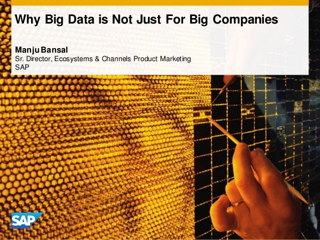 Why Big Data is Not Just For Big CompaniesManju BansalSr. Director, Ecosystems & Channels Product MarketingSAP