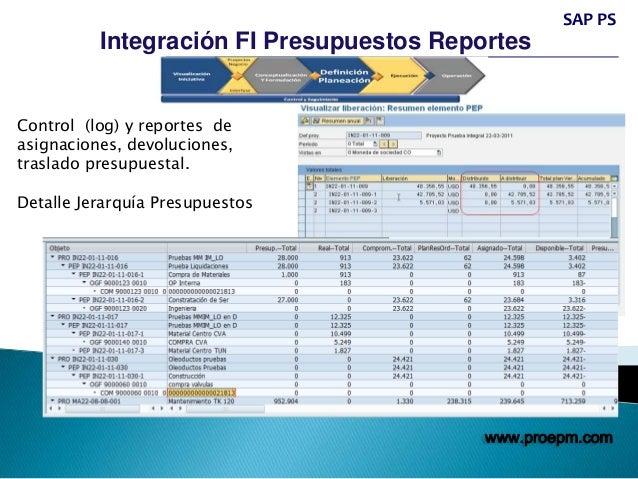 Sap Ps Project System Consultoria Entrenamiento
