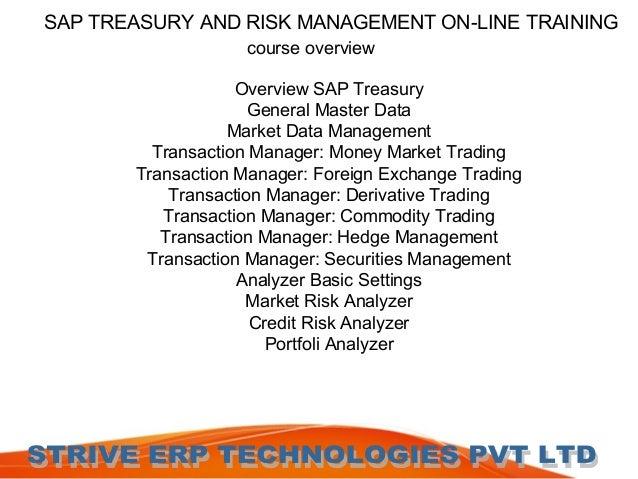Technology Management Image: Sap Treasury And Risk Management Training