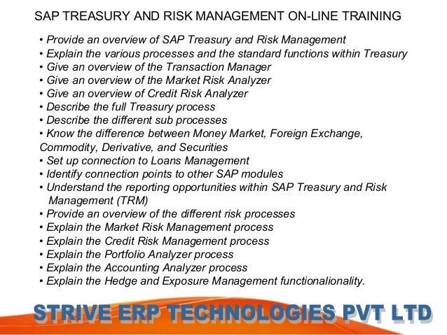 Technology Management Image: Sap Treasury And Risk Management Online Training