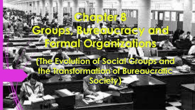 Chapter 8 Groups, Bureaucracy and Formal Organizations (The Evolution of Social Groups and the Transformation of Bureaucra...