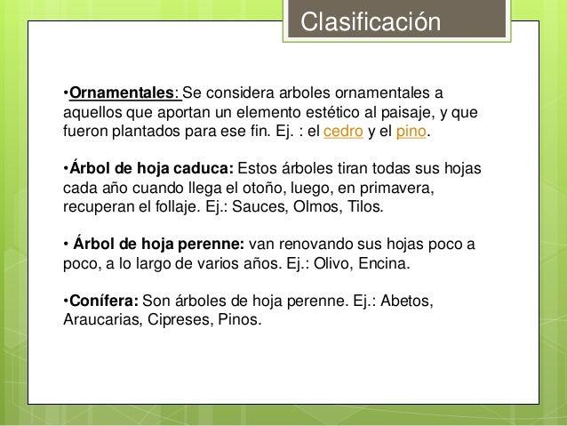 Clasificacion de la vegetacion for Arboles frutales de hoja caduca