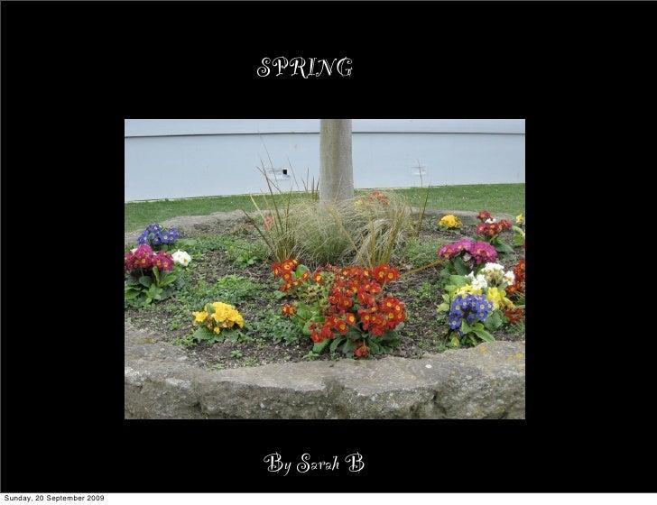 SPRING                                 By Sarah B Sunday, 20 September 2009