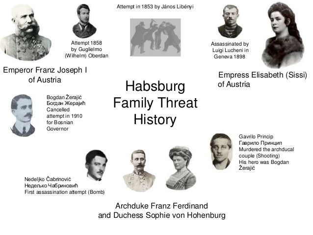 an analysis of archduke assasinated In the immediate aftermath of the assassination of archduke ferdinand and his  wife sofia in sarajevo, how austria would react to the killing of.