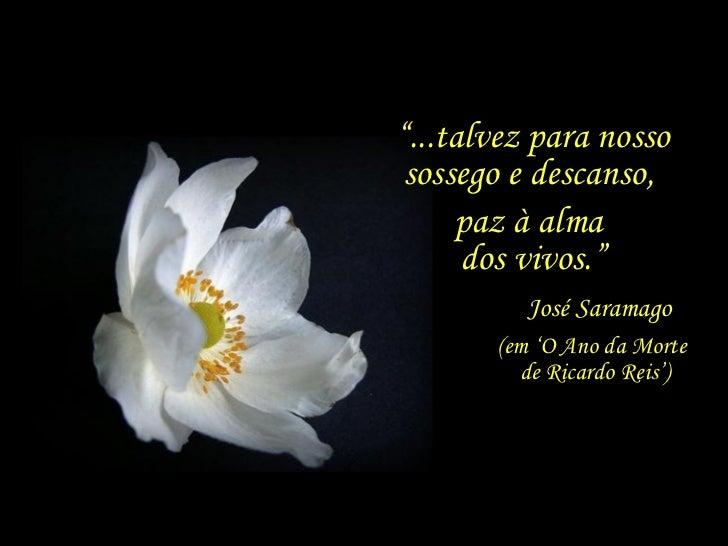 """"""" ...talvez para nosso sossego e descanso,  paz à alma  dos vivos."""" (em 'O Ano da Morte  de Ricardo Reis') José Saramago"""