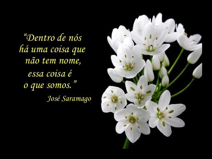""""""" Dentro de nós  há uma coisa que  não tem nome, essa coisa é  o que somos.""""  José Saramago"""