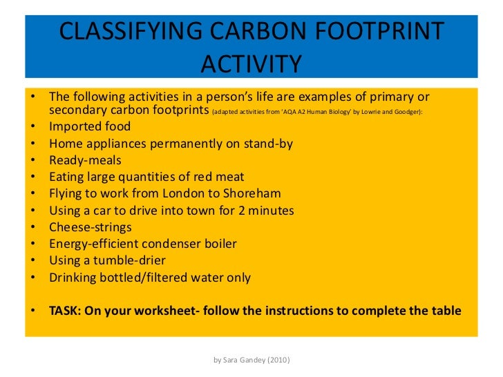CARBON FOOTPRINT – Human Footprint Worksheet