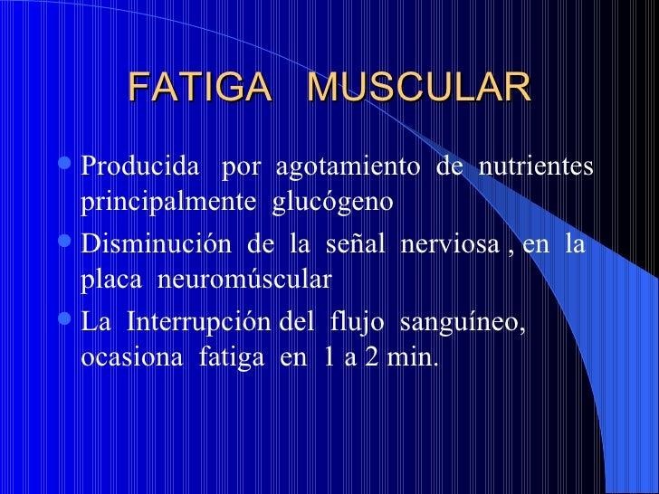 FATIGA  MUSCULAR <ul><li>Producida  por  agotamiento  de  nutrientes principalmente  glucógeno </li></ul><ul><li>Disminuci...
