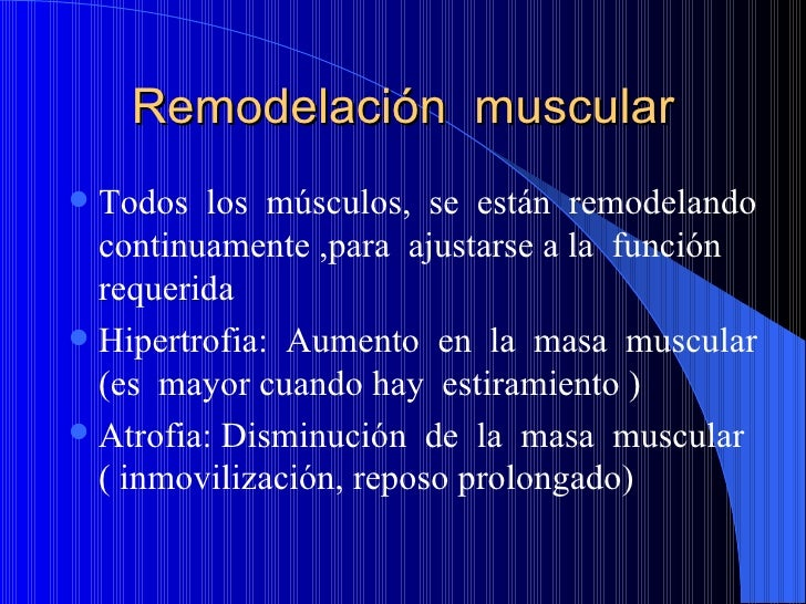 Remodelación  muscular <ul><li>Todos  los  músculos,  se  están  remodelando continuamente ,para  ajustarse a la  función ...