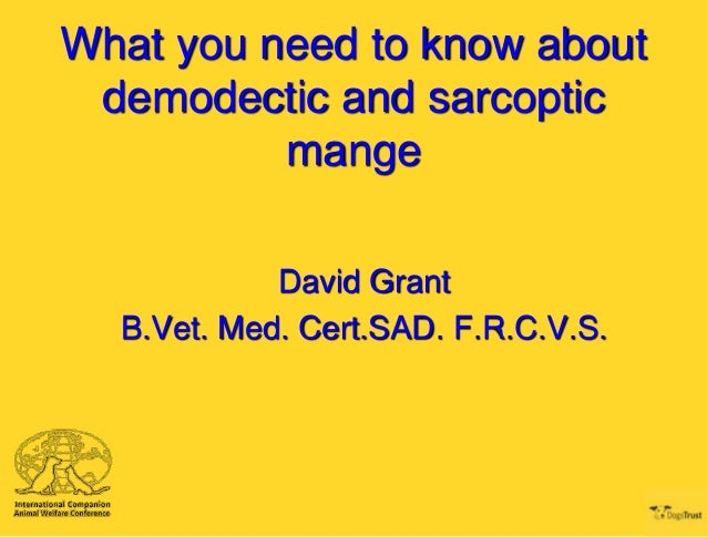 What you need to know about demodectic and sarcoptic mange David Grant B.Vet. Med. Cert.SAD. F.R.C.V.S.