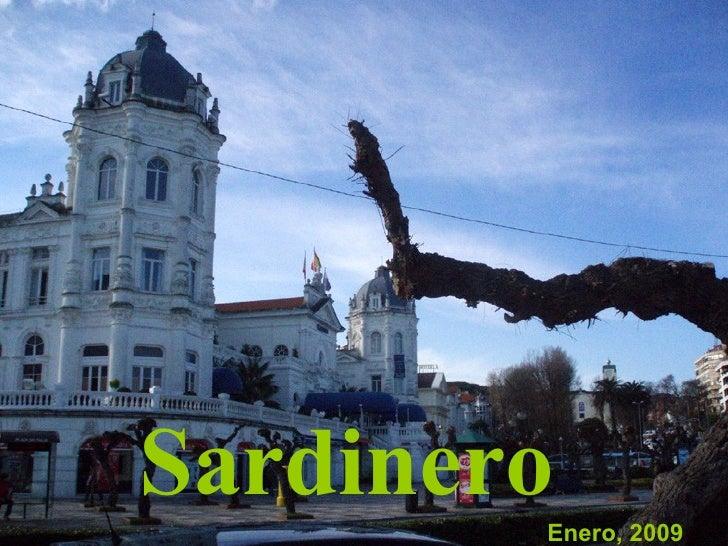 Enero, 2009 Sardinero