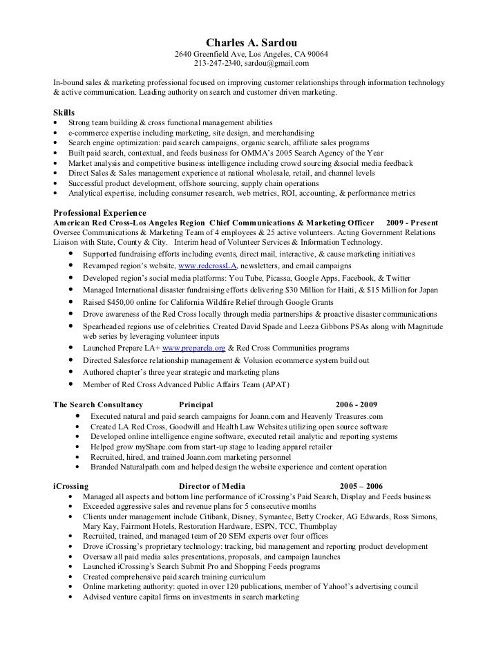 Salesforce Sample Resume Gallery - resume format examples 2018