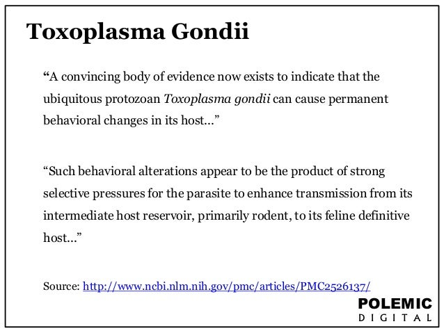 """POLEMIC  D I G I T A L  Toxoplasma Gondii  """"A convincing body of evidence now exists to indicate that the  ubiquitous prot..."""