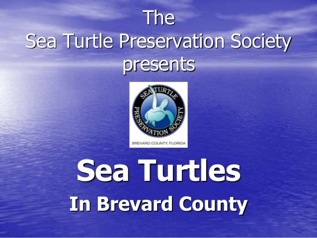 The Sea Turtle Preservation Society presents Sea Turtles In Brevard County