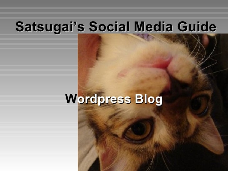 Satsugai's Social Media Guide W ordpress   Blog