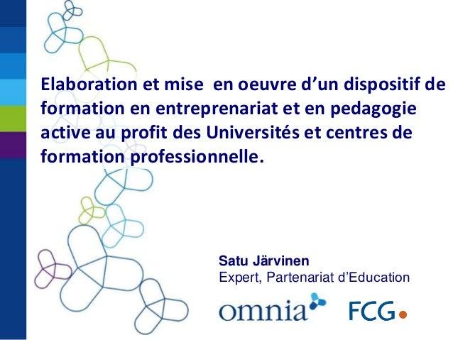 Satu Järvinen Expert, Partenariat d'Education Elaboration et mise en oeuvre d'un dispositif de formation en entreprenariat...