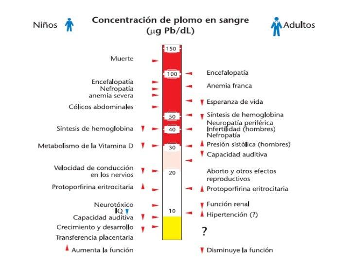 Secuelas<br />Disminución de la velocidad de conducción nerviosa<br />Disminución del coeficiente intelectual<br />Increme...