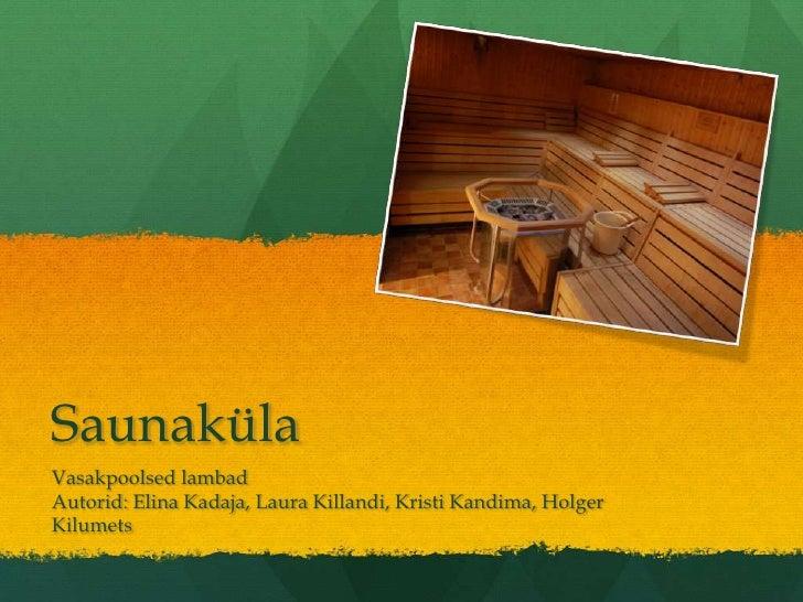 Saunaküla Vasakpoolsed lambad Autorid: Elina Kadaja, Laura Killandi, Kristi Kandima, Holger Kilumets